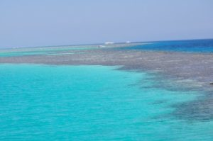 Riff in Hurghada tauchen